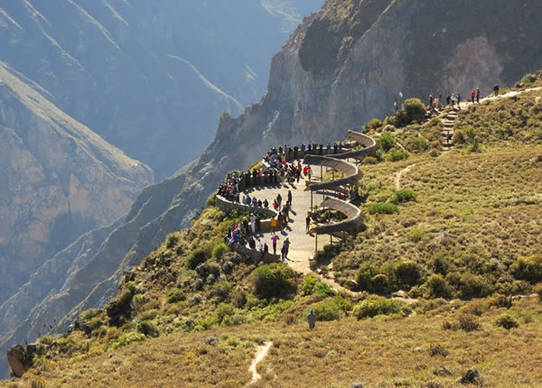 Tour Colca Canyon from Puno 2 Days 1 Night